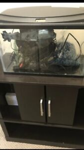 10g Fish tank and stand