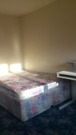 Large double room for professional nonsmoker £450-£500 per month in Willen Ensuite Double £600/mth