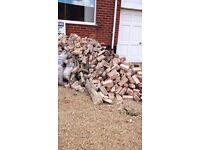Bricks and brick rubble