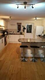 room to let in newton abbot