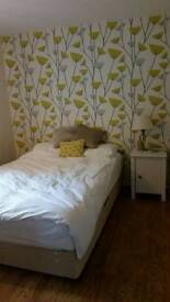 Double room available now!