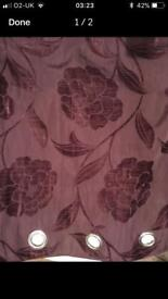 NEXT Floral, eyelet, Lined curtains