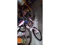 Girls bike pink Applo - halfords