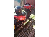 Malaguti firewall f15 rare moped 50cc 2stroke