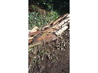 FREE TO COLLECTOR TIMBER FIRE WOOD HARDCORE
