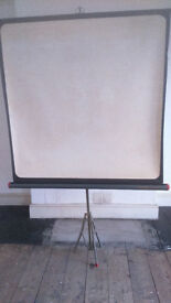 Hannimex 3C free standing projector screen