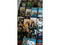Meerkats full set of 17
