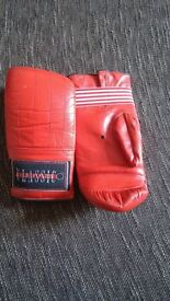 classic light boxing gloves free