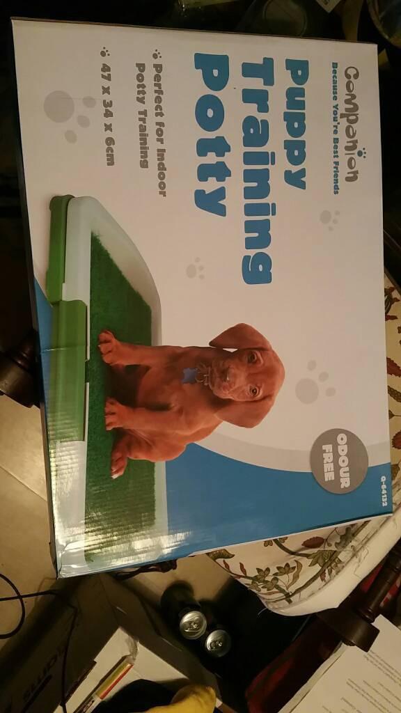 Puppy training potty