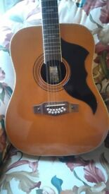 12 String Jumbo Accoustic. Very Good Condition.