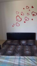 We are glad to offer this spacious double bedroom in a 4 Bedroom House with storage and balcony