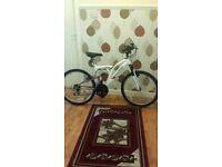 Girls Bike (bicycle)