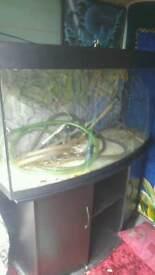 Jewel vision 260l 4ft fish tank