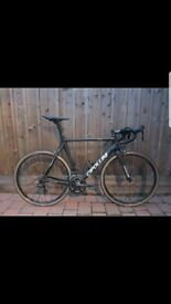 Cipollini RB 800 Road Bike