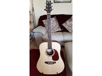 Ashton Acoustic Guitar with full starter pack - almost brand new!