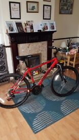 Pro mountain bike for sale.