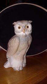 noa owl 7 inch