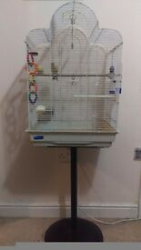2x Canary birds + Cage + Cage stand