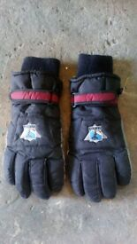Ski gloves men's