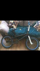 BARGAIN BMX