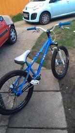 Custom dmr jump bike