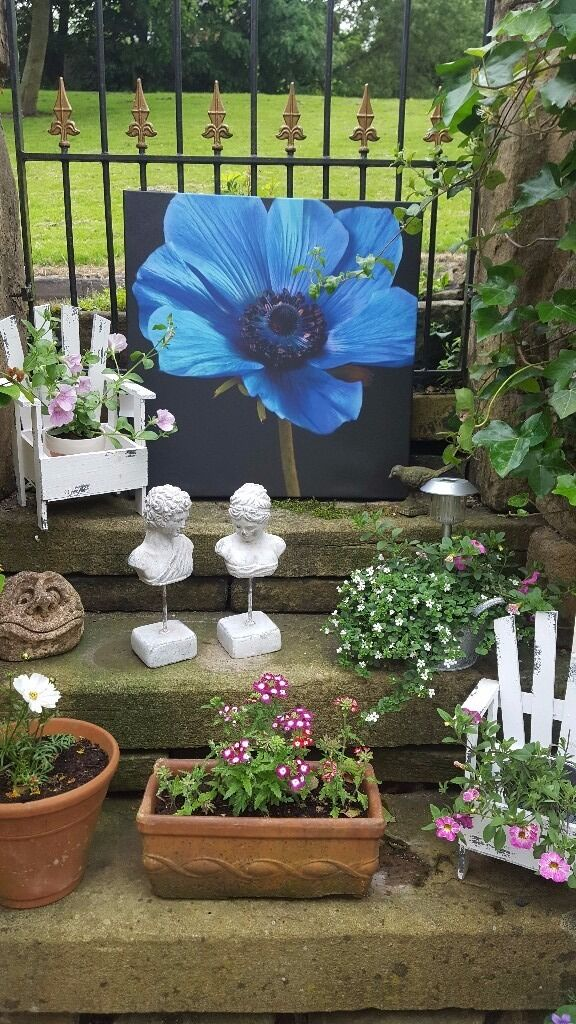 Arthouse Brand New Outdoor Garden Weatherproof Canvasin Stalybridge, ManchesterGumtree - Blue Anemone Flower Outdoor / Indoor Canvas Garden Wall Art Picture 57cm x 57cm Bright Blue Anemone Floral wall art. Weather resistant, Waterproof and Fade Proof Use as a feature in your Garden or Back Yard Hang outside in all Weather Conditions A...