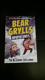 Book Bear Grylls Adventures The blizzard challenge