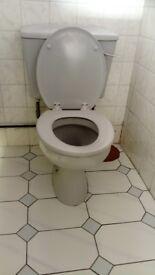 Grey ceramic toilets x5. 70s vintage!