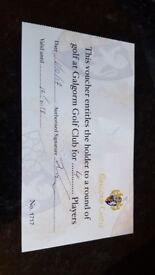 Fourball voucher for Galgorm Castle golf club