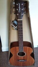 Tanglewood TW2 Guitar
