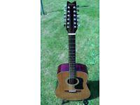 Washburn D12-12N - Acoustic 12 String Guitar 1986.