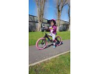 Girls (NEW) Bicycle. Suitable for Age Group 4 - 6 years. Can deliver it to Central London.