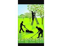 Garden & handyman services