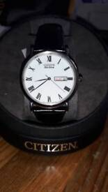 Citizen eco drive mens watch (new, tags)