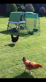 Eglu chicken coupe