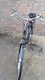 Dutch import bicycle -new price-
