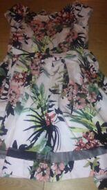 Peococks dress size 12