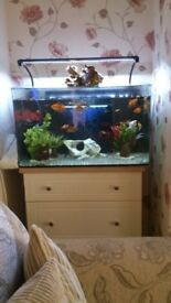 Fish tank. aqua 1