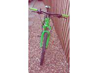 Mens Cube Mountain Bike