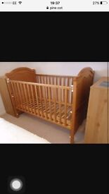 Pine wood cot