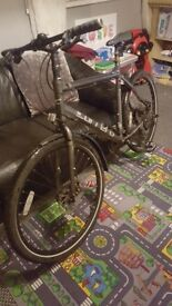 Mens carrera subway 2 mountain bike