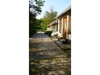 Reduced - Holiday home in Hungary with vine groves, fruit trees and land.