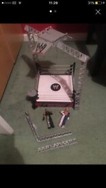 Wrestling ring and wrestlers