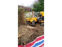Sudbury Tree Stump Grinding And Tree Root Removal