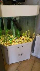 Approx 200L fish tank & cabinet incl all the trimmings