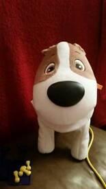 Caca max pooping dog