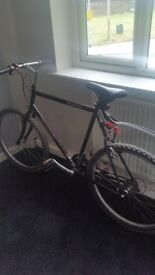 Giant 200 pro mountain bike oversized frame