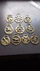 10 x Horse brasses