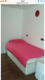 Newly renovated lovely room