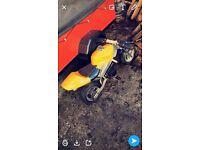 Mini Moto rev an go 49cc